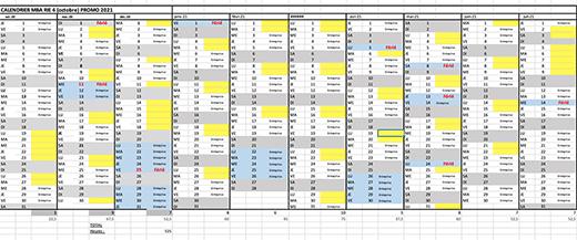 Planning M1 Risques et Intelligence Economique